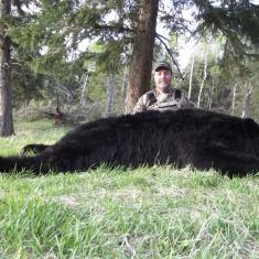 Steve Bryant\'s 2012 Black Bear Green Score 19 1/2