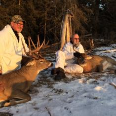 2 Canadian Bruisers Down